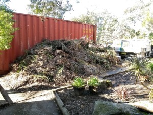 green waste removal_01